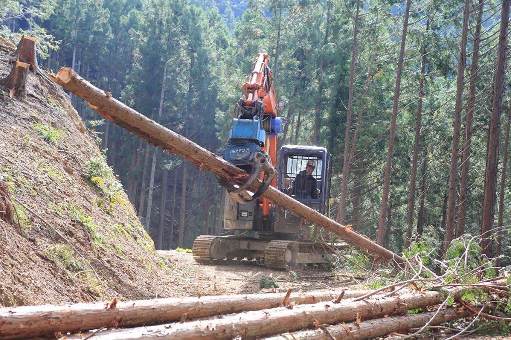 有限会社青木林業の画像