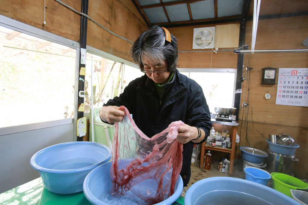 紬樹の雫の画像